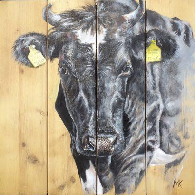 Koe op steigerhout, 76 x 76 cm